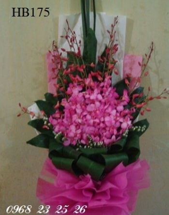 hoa hb175